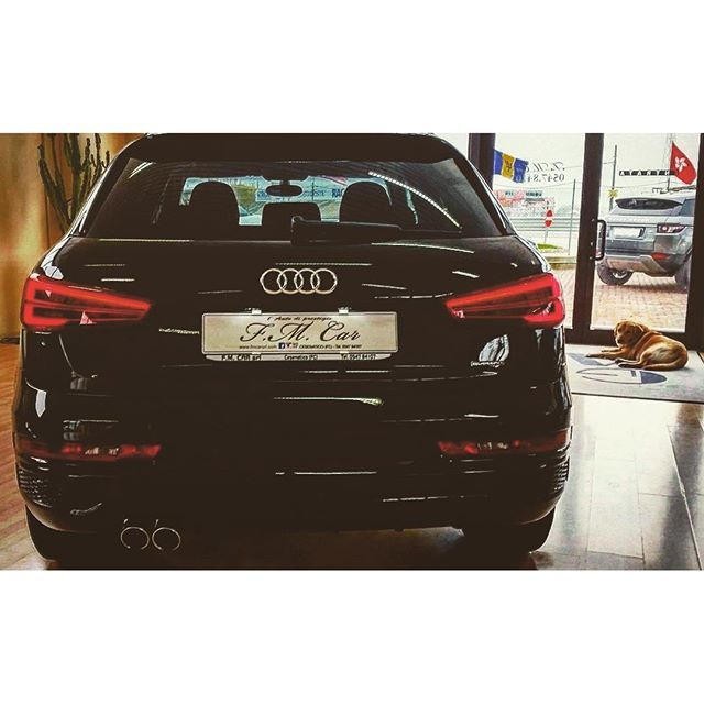 Q3 #audi  #audiq3#audigram#audigramm#audilove#instaaudi#car#cars#suv#carsgram#carsofinstagram#carselfie#germancars#auto#autogram#automobile#automotive#autosalone#showroom#new#drive#business#amazing#awesome#awesomecars#awesome_shots#pic#picture#black#dog http://blog.fmcarsrl.com/wp-content/uploads/2016/04/12965101_1776840305872685_1258286953_n.jpg http://blog.fmcarsrl.com/index.php/2016/04/11/q3-audi-audiq3audigramaudigrammaudiloveinstaaudicarcarssuvcarsgramcarsofinstagramcars