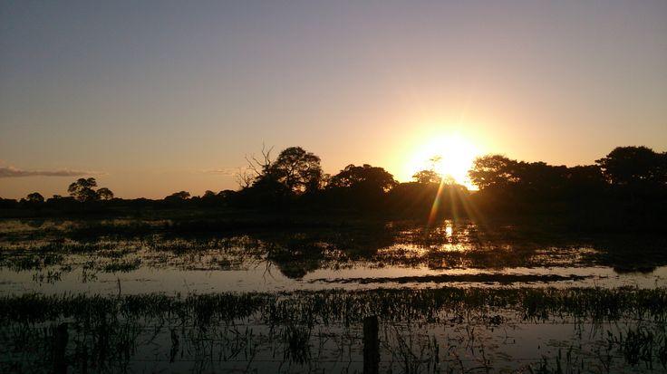 The Pantanal (Brazil)