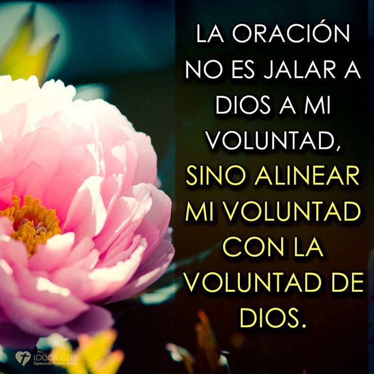 Filipenses 4:6-7 Por nada estéis afanosos, sino sean conocidas vuestras…