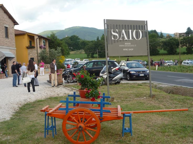 SAIO Wine Shop
