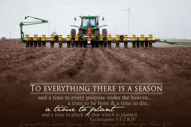 Farming Season Planting Photography