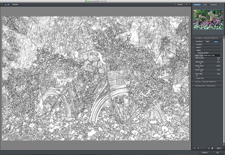 Create a Digital Painting, Topaz Simplify, Greg Lindenbach, Topaz Labs
