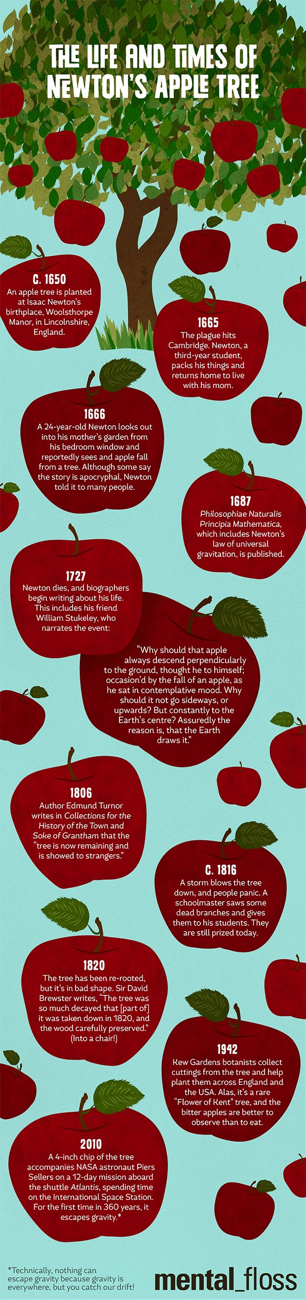 best ideas about isaac newton newton quotes the life and times of isaac newton s apple tree