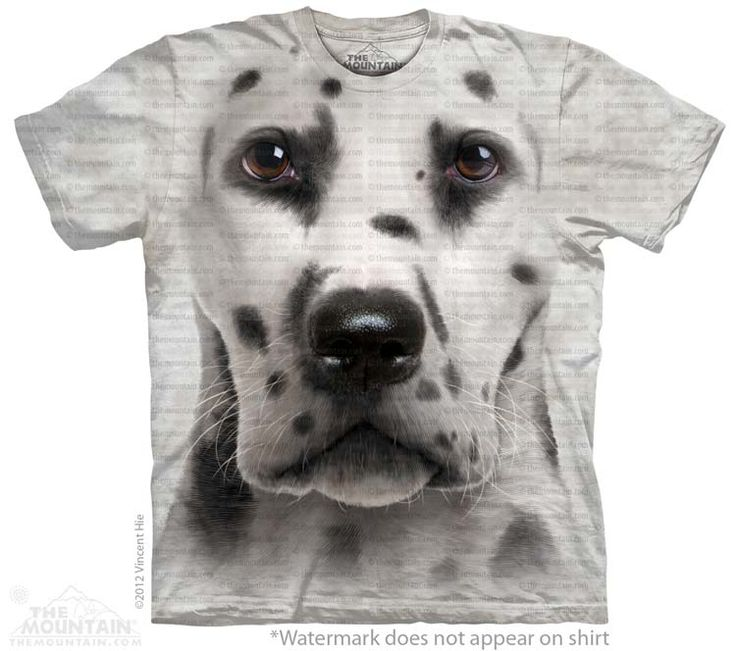 Big Face Dalmatian T-Shirt - Click image to see hundreds of different animal t-shirts
