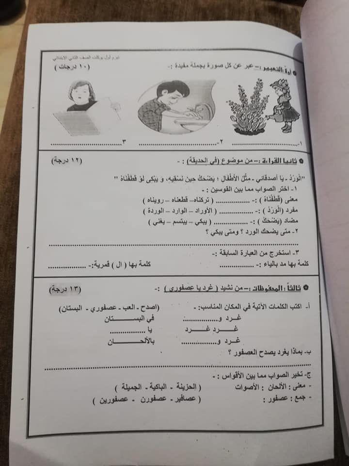 نموذج امتحان للغة العربية للصف الثاني الابتدائى ترم اول 2019 وفقا للنظام الجديد Fun Science Learning Arabic Language