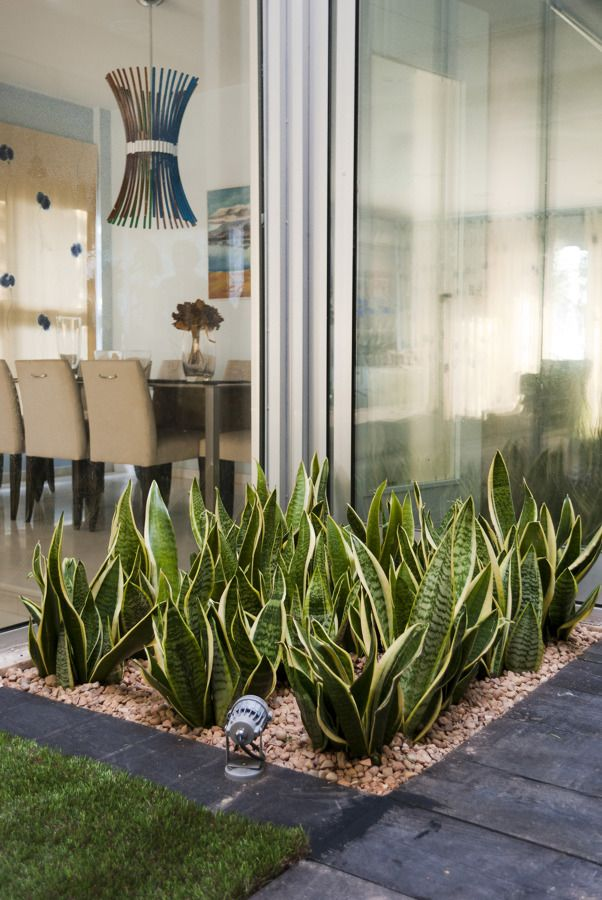 jardines de entrada minimalistas - Buscar con Google