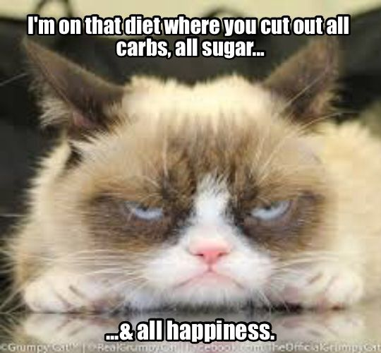 Dieting tips from Grumpy Cat.