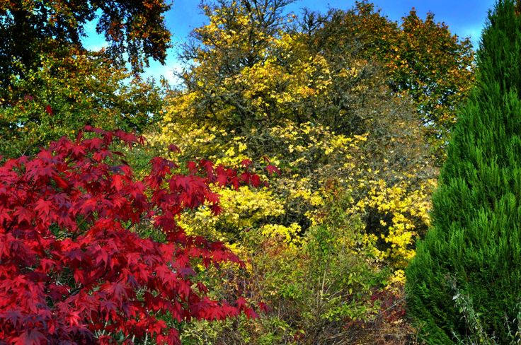 Our Calendar Contenders for Autumn | PomPrint Blog and App for iPhone