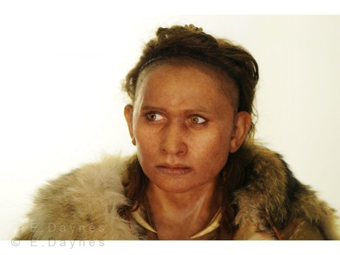 Reconstruction of a 47, 000 to 17, 000 year old female homo sapien found in Abri-Pataud, France