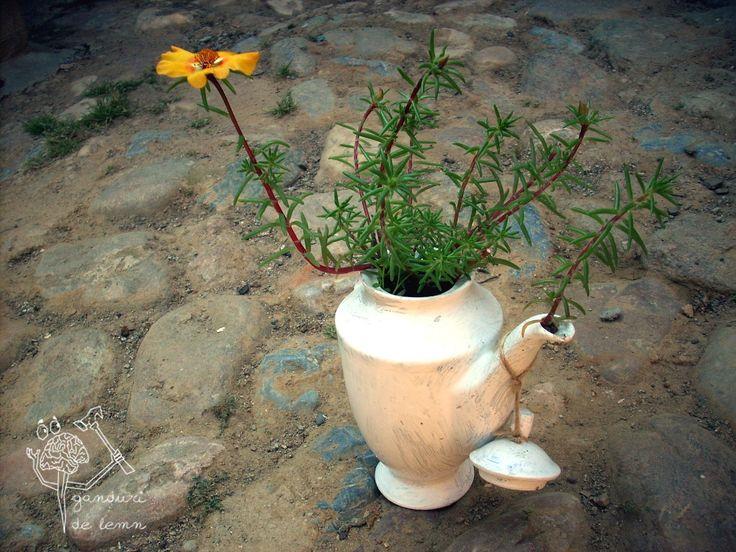 ganduri de lemn - vaza de ceramica cu  flori 6