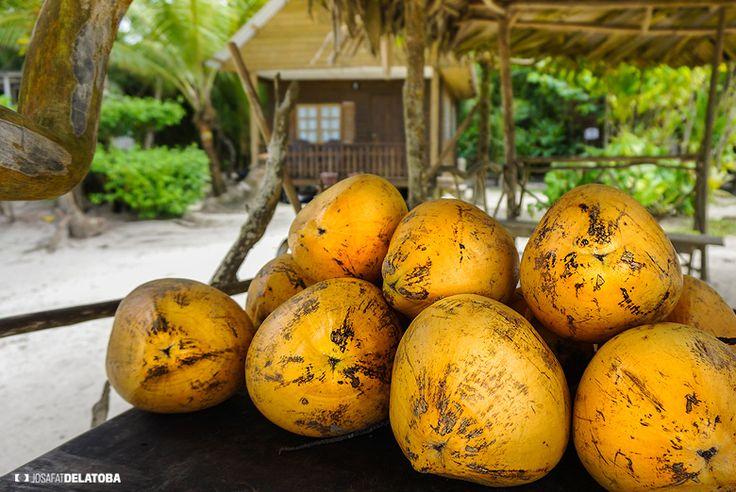 Coconuts  #josafatdelatoba #cabophotographer #travels #guatemala # #landscapephotography #playablanca #beach