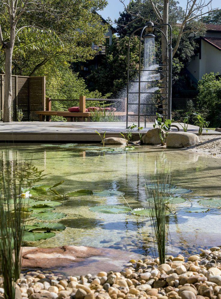"""""""As piscinas naturais vão potencializar o paisagismo. É muito importante que a escolha de plantas para as áreas secas conversem com as selecionadas para a área aquática"""", diz o paisagista Alexandre Furcolin."""
