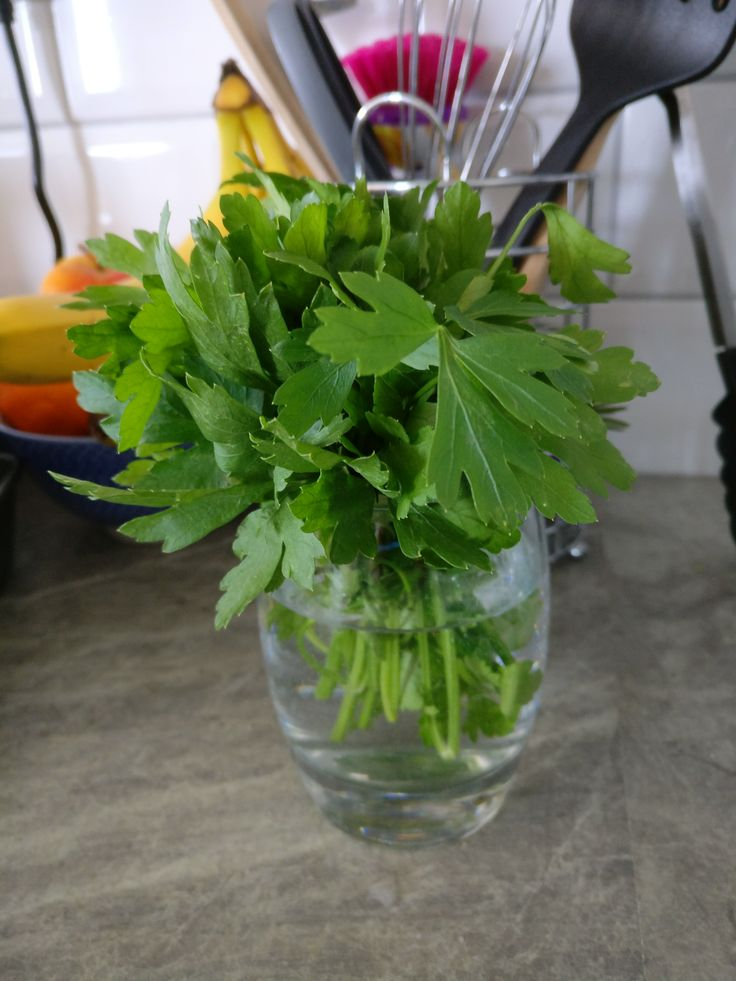 """To be like parsley: Food idioms in different countries  There is an expression in Italian """"essere un prezzemolino"""", almost literally """"to be like parsley"""". I think the equivalent in English is """"to have a finger in every pie"""" and the meaning is clear: it indicates someone who is always in the middle, who turns up everywhere. What I find amazing is the difference between these cultures on what it is that omnipresent: in Italy we use parsley and in the United Kingdom it's the pie that's…"""
