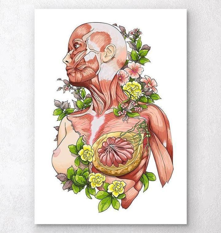 Anatomy Art Wallpaper Anatomy Art In 2020 Anatomy Art Human Anatomy Art Nurse Art