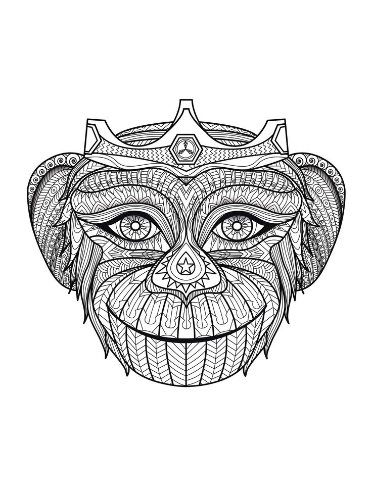 Coloring-adult-monkey-head, From The Gallery : Animals