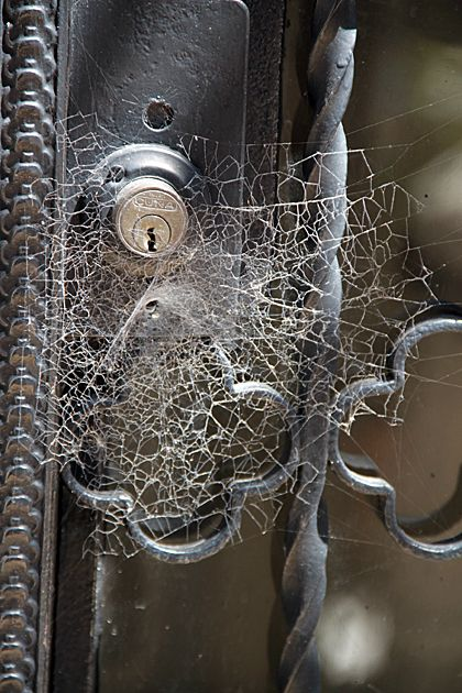 Cemeteries Ghosts Graveyards Spirits:  A spiderweb across a #cemetery gate (Argentina).