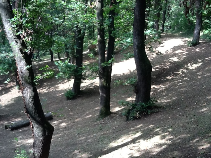 Colline di Boves
