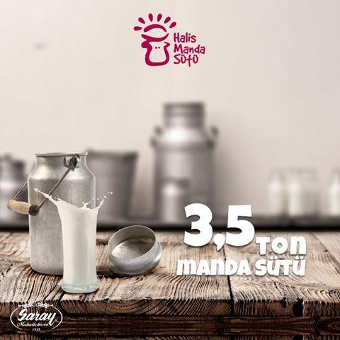 Saray Mandıra'dan elde ettiğimiz günlük süt miktarı 3,5 ton!