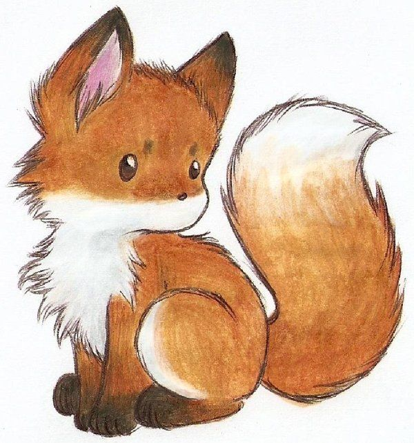 Best 25 Fox Drawing Ideas On Pinterest Simple Animal