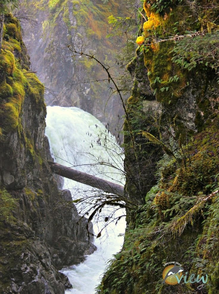Little Qualicum Falls - If you are looking for a nice easy hike with spectacular scenery while in the Parksville area, then Little Qualicum Falls is for you!