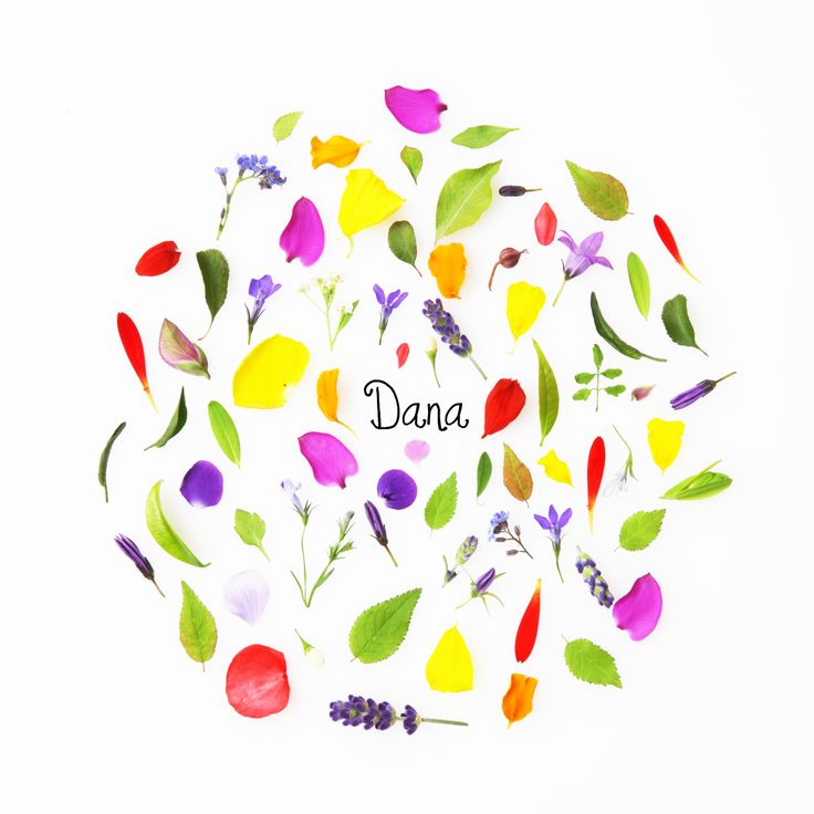 Een kaleidoscoop van fleurige blaadjes