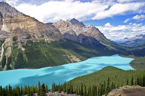 Peyto Lake - Found on the Ice Fields Parkway in the Canadian Rockies.  This lake is shaped like the head of a wolf and has a rare milky blue color.