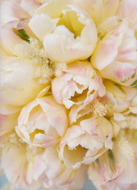 mini jardim de leguminosas:1000+ images about Flowers, and greenery on Pinterest
