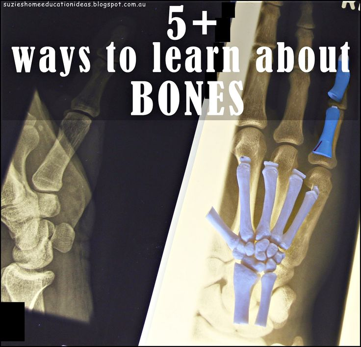 5  ways to Learn about Bones - links to printable skeleton, parts of the skeleton three-part cards, hands-on foot bones and spine learning activities, and skeleton system lapbook