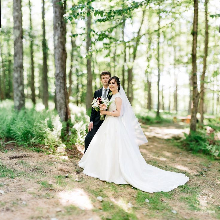 The Edgewater Reviews Ratings Wedding Ceremony: Summer Forest Wedding Images On