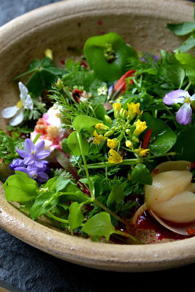 Tyúkhúr saláta #tyúkhúr Seasonal wild food salad: Chickweed, Miner's Lettuce, Radish flowers, Mustard flowers, Watercress, Chervil, Wild Fennel, Oxalis flowers and leaves, Wild Hyacinth Flowers, Elderflowers, Filaree, Indian paintbrush flowers, pickled yucca flower, lerps sugar, raw goat feta, sweet white clover salt and red beet vinegar with raw honey. Yum! www.urbanoutdoorskills.com