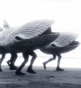 une nouvelle espèce...