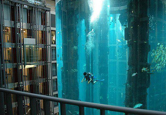 Con el nombre de Aquadom, este espectacular tanque está ubicado en el atrio del Hotel Radisson Blu en Berlin, contiene casi un millón de litros de agua y para darle un poco más de vida, en su interior han introducido 56 especies de peces tropicales y un mini arrecife.