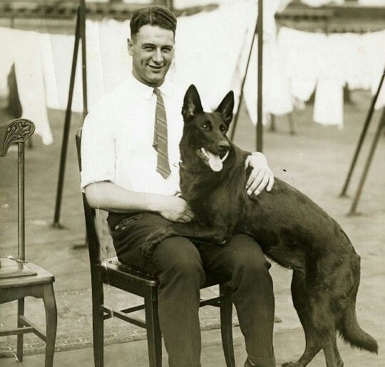 """Lou Gehrig with his black German Shepherd Dog """"Afra of Cosalta"""" 1933 – A black German Shepherd Dog belonging to New York Yankee great, Lou Gehrig, is among this year's entries. """"Afra of Cosalta"""" takes second in the Open Bitch class; Gehrig goes on to some success on the baseball field instead, finishing with a .340 lifetime batting average as one of the most beloved Yankees of all time."""