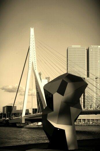 Erasmusbrug in Rotterdam.