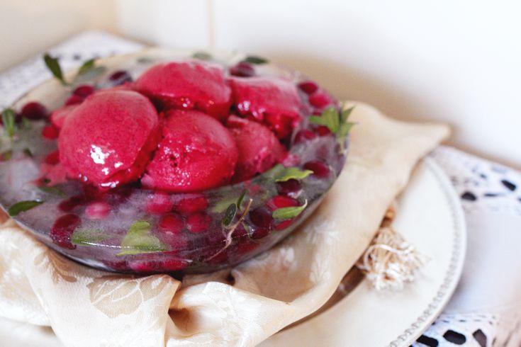 Cranberry & Raspberry sorbet and...no-fuss frozen dessert ideas. - Gusto Chocolates