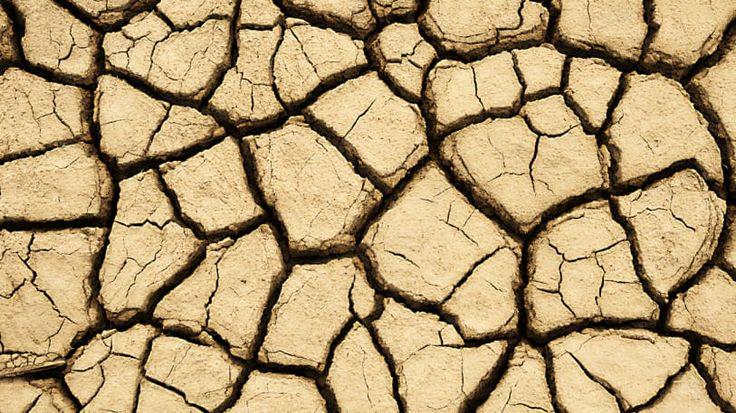 Een droge moestuin, wat nu ? De tonnen leeg, geen irrigatie systeem of wateraansluiting, tevergeefs de buienradar bekijken, opwarming (lees uitdroging) van de aarde, … Het is weer zo ver. In mijn dorp viel er de laatste twee maanden april en mei slechts 23,2 mm. In 2016 was dat 85,7 mm. De jaren daarvoor gelijkaardig. …
