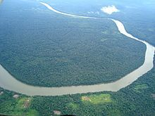 Aerial view of the Amazon rainforest, taken from a plane.
