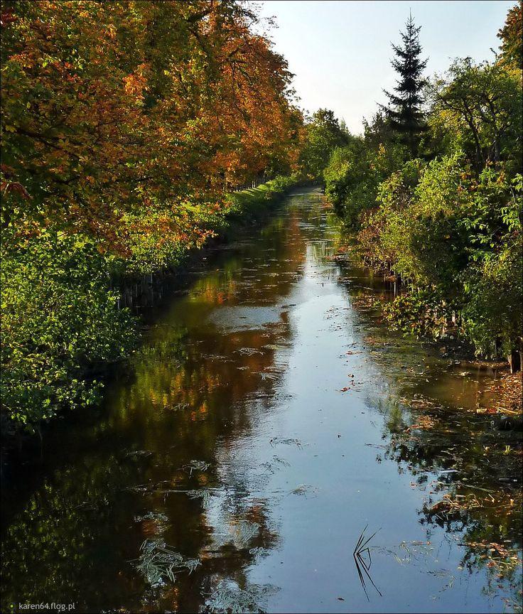 5717235_jesienny-kanal-raduni.jpg (933×1096)