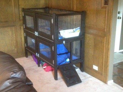 277 best guinea pig cage ideas images on pinterest for Design indoor rabbit cages