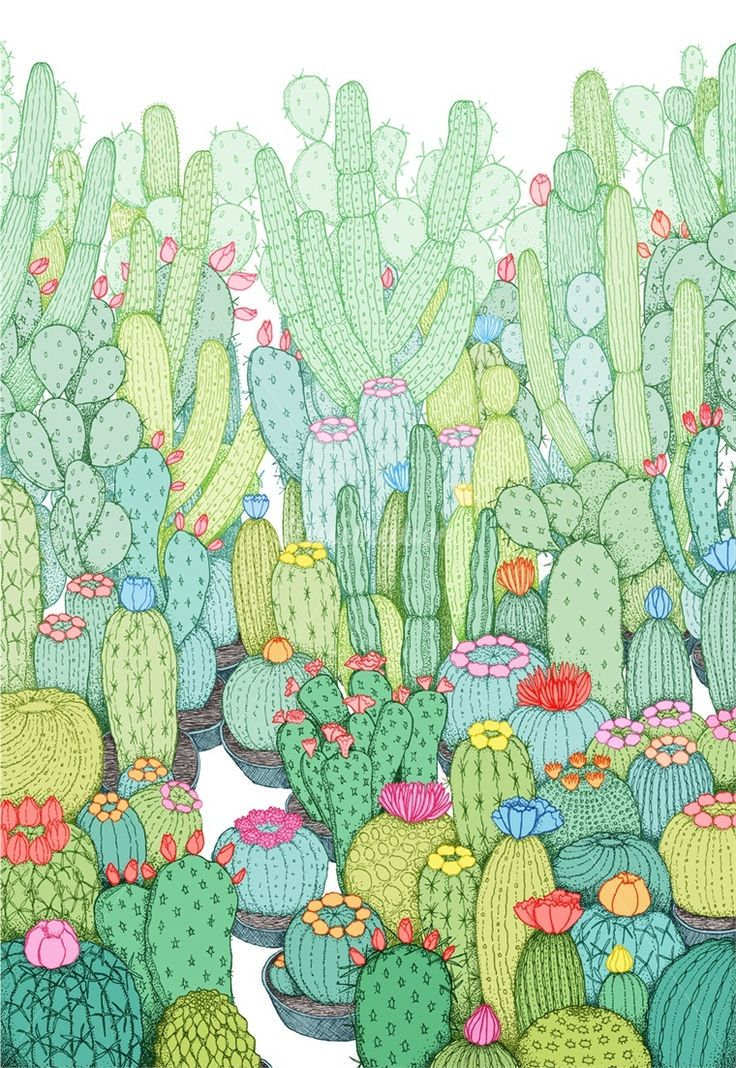 10 best II images on Pinterest Drawings Cacti garden and Painting