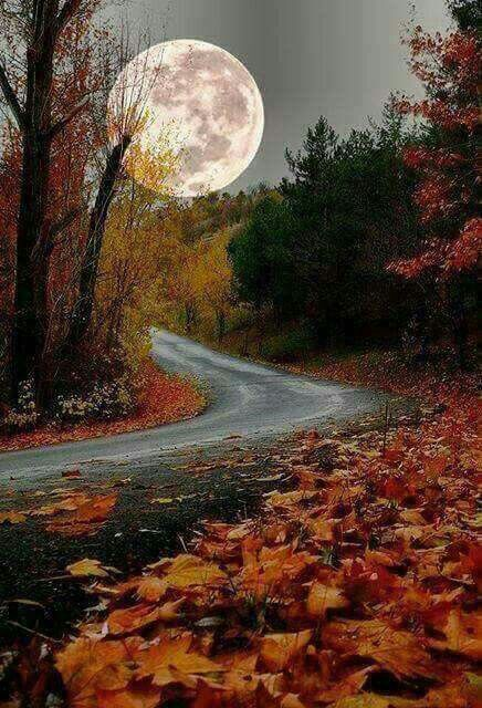 """I've never seen a moon so close before""- Jennifer Aniston in Bruce Almighty. Gosh this is a captivating fall photo 😃"