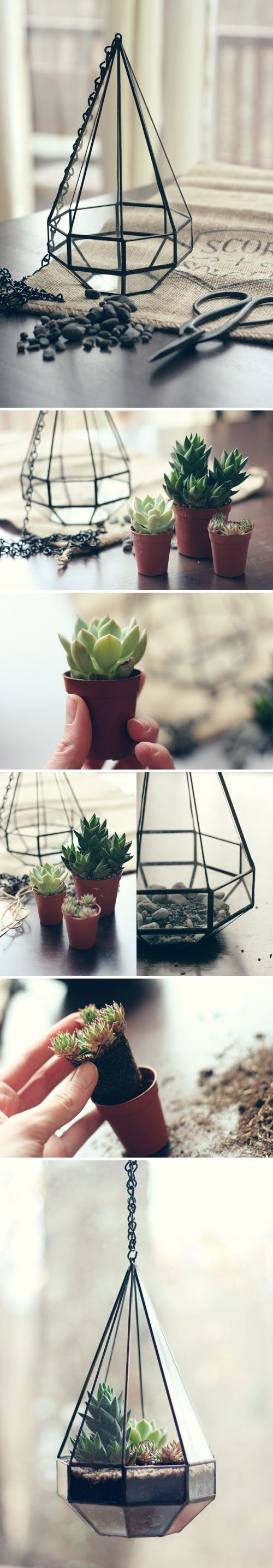 faceted glass hanging terrarium DIY
