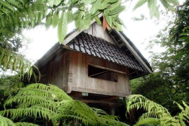 The Budget Traditional Ricehouse di Selemadeg, Bali, Indonesia