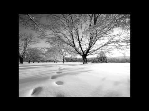 "Poem ""Velvet Shoes"" by Eleanor Wylie......musical arrangement.....the glory of winter set to poetry and song...."