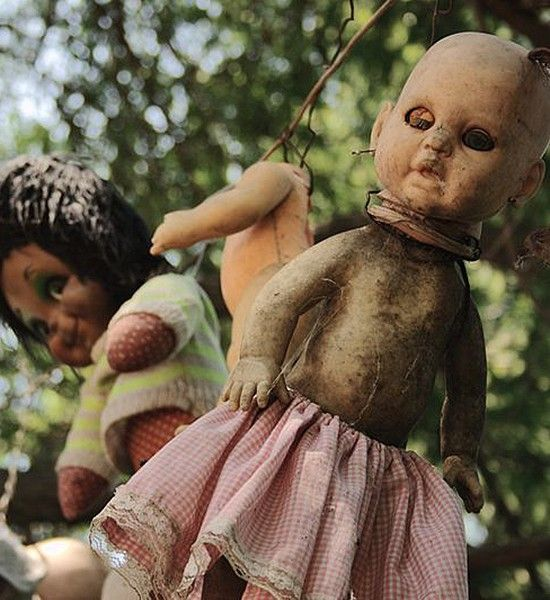 La Isla De La Munecas, Mexico Fifty years ago, a man named Don Julian Santana lived a hermit-like life on one of the islands. His existence was shattered when he fished the corpse of a young girl out of the water. As some sort of totemic protection, he started hanging dolls from the limbs of tree branches on his island. Over the next few decades, he continued this creepy habit until his whole island was infested with broken, weathered dolls. It's a truly terrifying place.