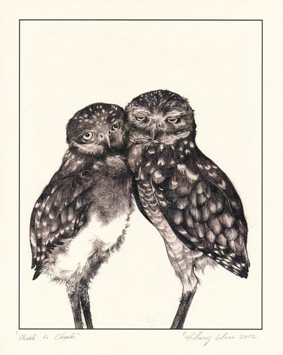 "Burrowing Owl Cheek to Cheek Print 11"" x 14"" // by Hilary Ann Love Glass-Waterbury"