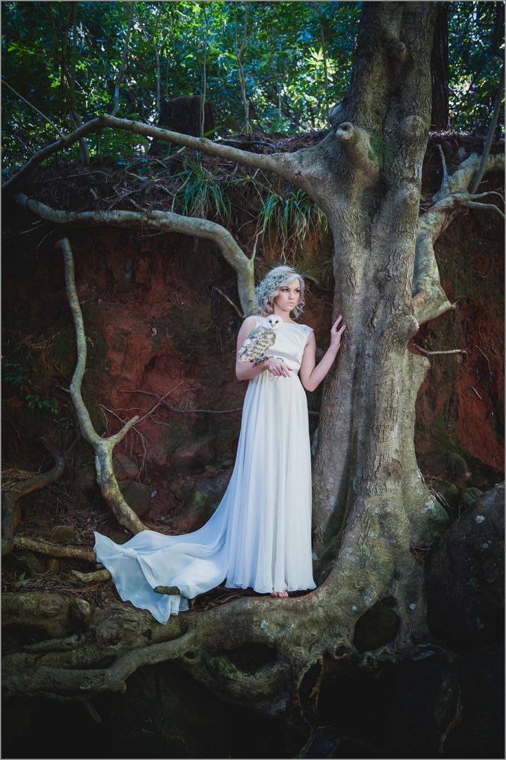 Cape-Town-wedding-Photographer-Lauren-Kriedemann-owl-forest-magical024