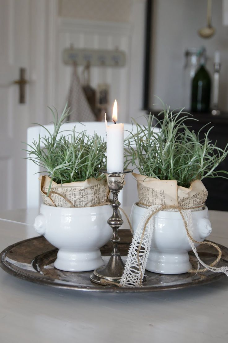 Newspaper wrapped plants in white pots on a silver tray. Definitely yes.