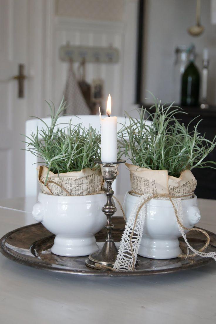 pretty rosemary pots