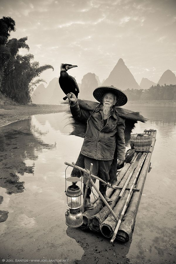 I've been extensively photographing this area in Guangxi province, China, since 2006 and witnessing the fast decay of the cormorant fisherman. The man in the foreground is one of the last in activity. The youngest fisherman are attracted by new and more profitable jobs, opening the way for the disappearing of a traditional craft and culture.